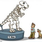 mr trex bones